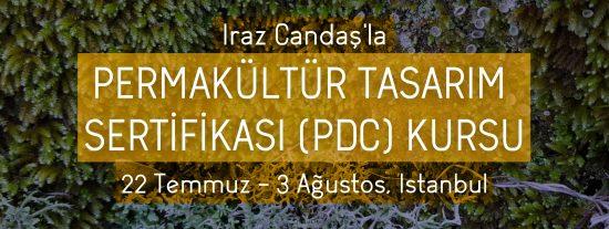 pdc_ayrez-02